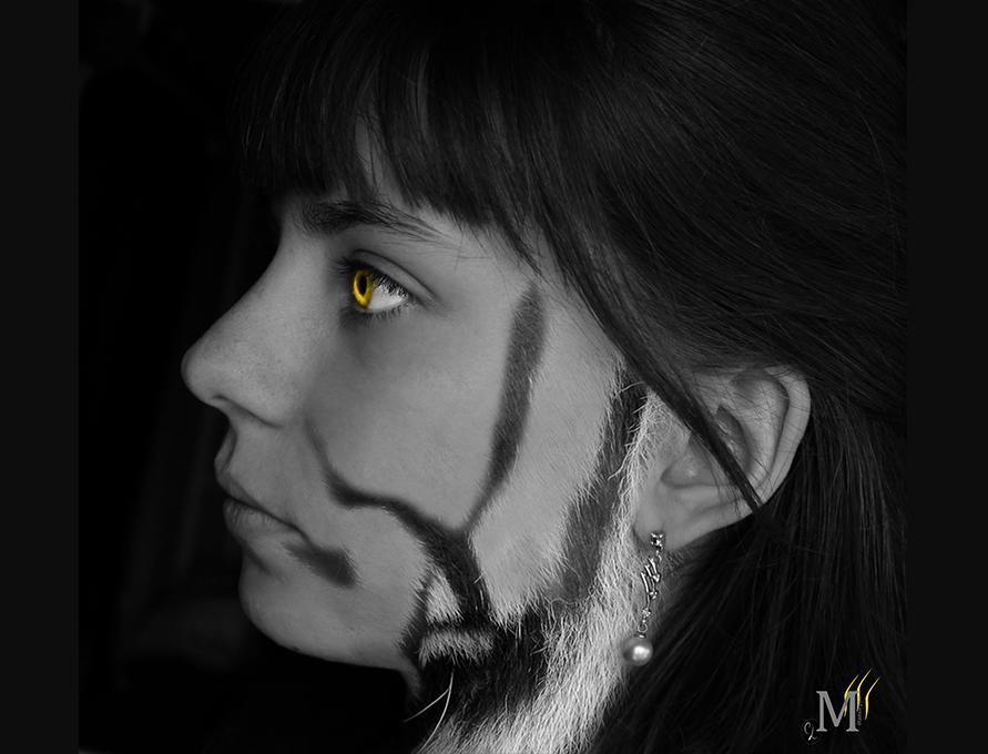 Photomontage métamorphe tigre