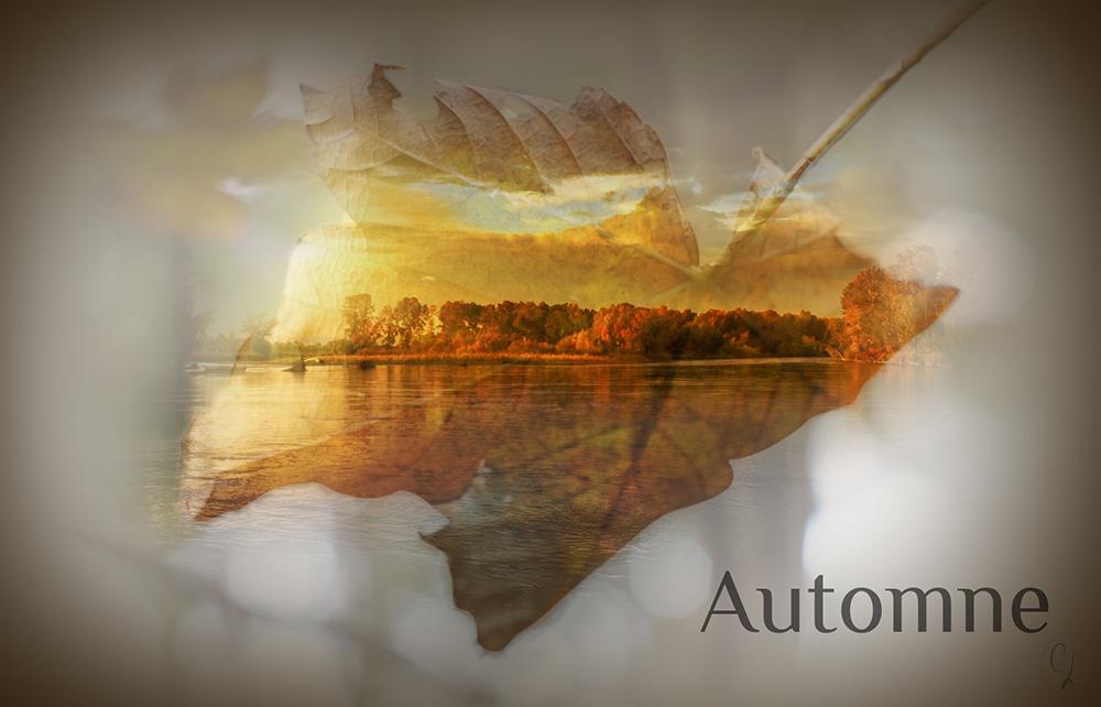 Automne - Photomontage