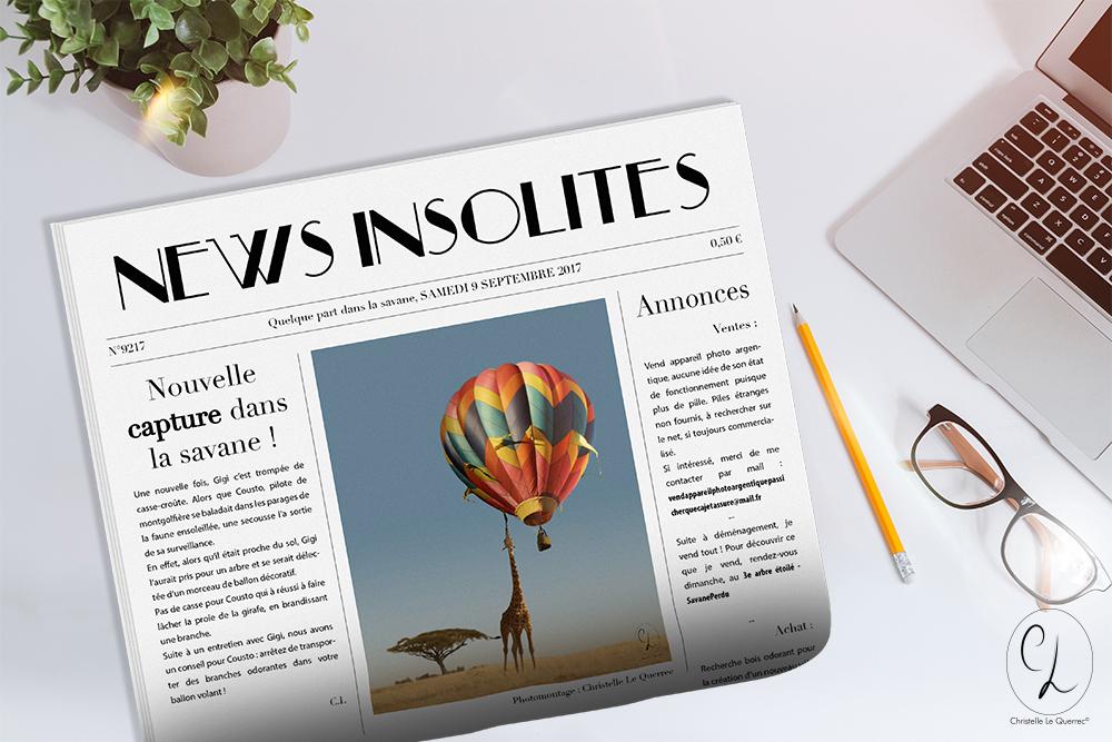 Faux journal - News Insolite Savane