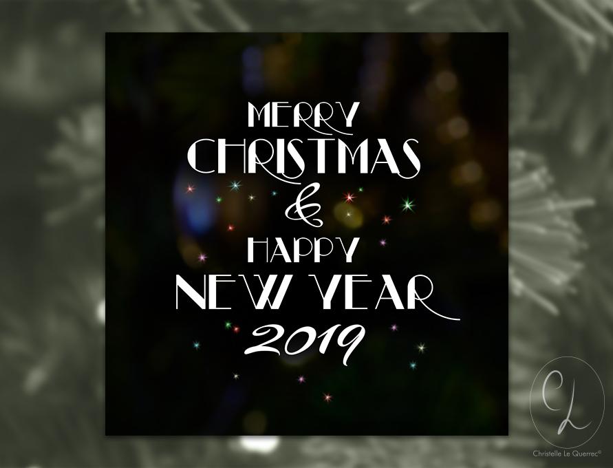Carte de vœux 2019_Christelle Le Querrec